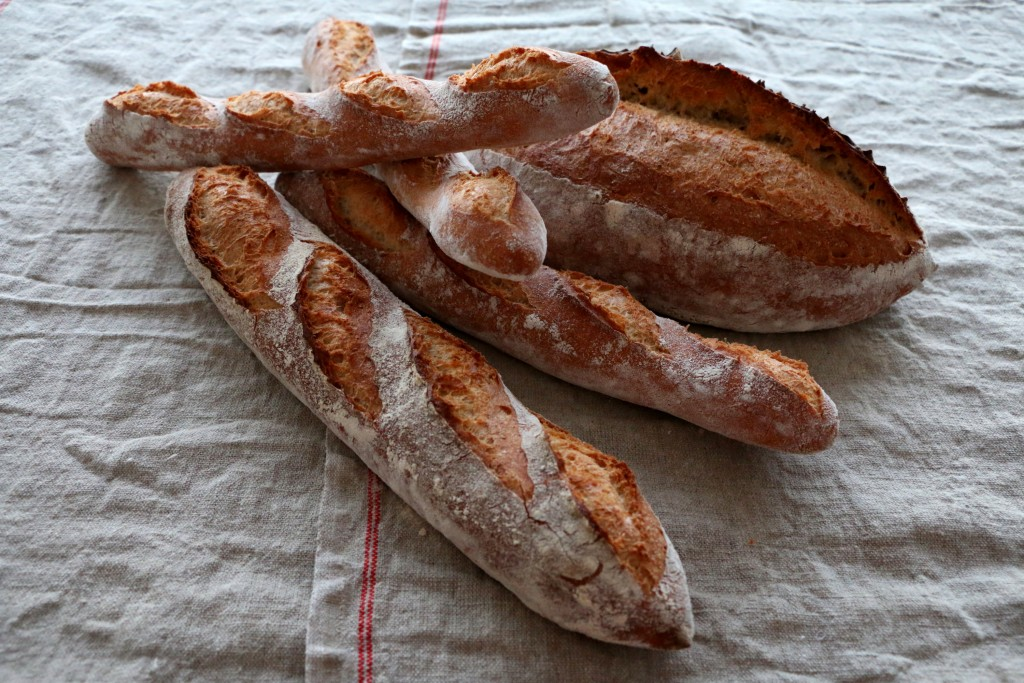 Crusty batard, baton, and ficelle